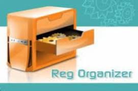 Reg Organizer v7